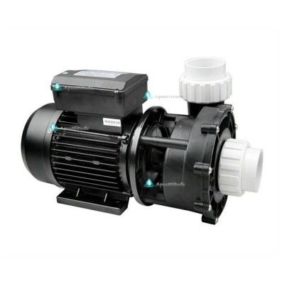 LX WP400-I - Pompe de massage 4HP 1 vitesse